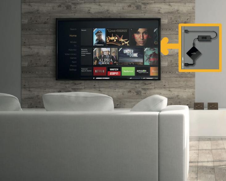 FTV Living Room